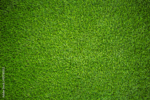 Poster Gras artificial grass
