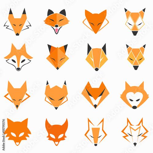 Valokuva  Fox Face