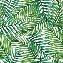 Watercolor Tropical Palm Leave...