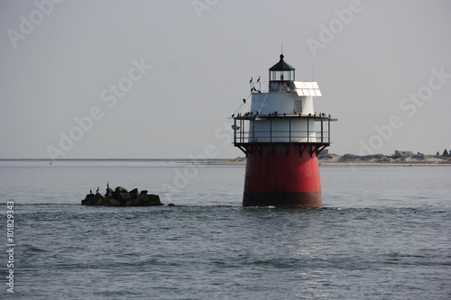 Fotografie, Obraz  Lighthouse in Plymouth Harbor , Plymouth Massachusetts