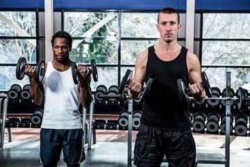 Muscular men exercising with dumbbells
