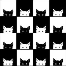 Black White Cat Chess Board Background Vector Illustration