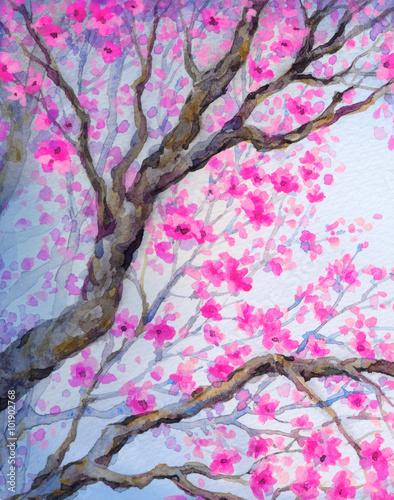 Fotografie, Obraz  Krásný pták na kvetoucí větvi. akvarelu