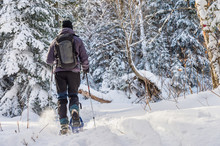 Young Man Snowshoeing In Winte...