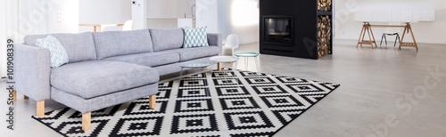 Fotografie, Obraz  Contemporary salon with sofa