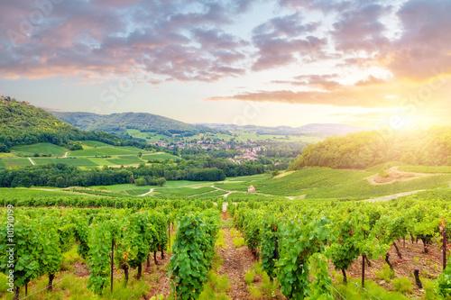 Photo sur Aluminium Vignoble Panorama of vineyards in Burgundy. France
