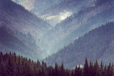 Landscape of mountain forest hills. - 101920986