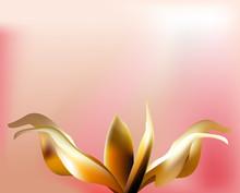 Rose Petal Flower  Shell On Pink