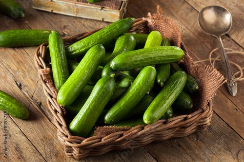 Raw Organic Mini Baby Cucumbers