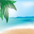 Tropical beach and sea background with palm branch. Vector illustration