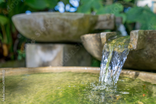 Tropical garden. Stone bowl with water flowing