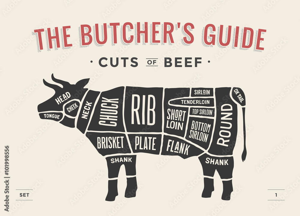 Fototapeta Cut of beef set. Poster Butcher diagram and scheme - Cow. Vintage typographic hand-drawn. Vector illustration.