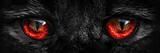 Fototapeta Zwierzęta - shaggy monster red eyes closeup