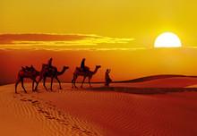 Beautiful Sunset At  Desert , Jaisalmer,India