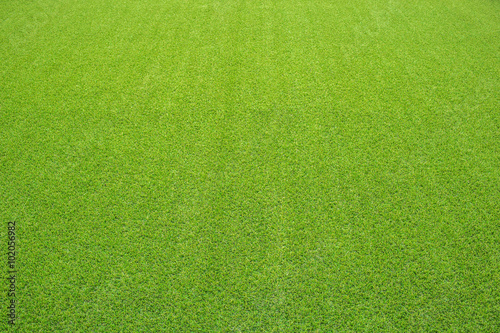 Poster Gras artificial grass, perspective