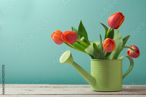 Photo  Spring tulip flower bouquet in watering can with copy space
