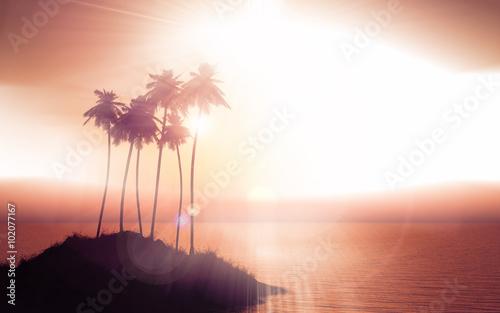 Printed kitchen splashbacks Beige Palm tree island against a sunset sky