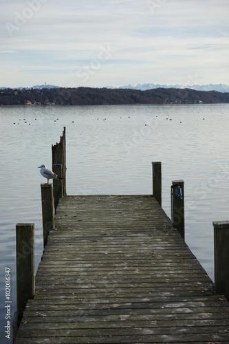 Fototapety, obrazy: Starnberger See im Winter - Hochformat