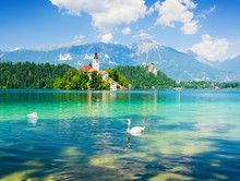 Lake Bled With Swan, Slovenia,...