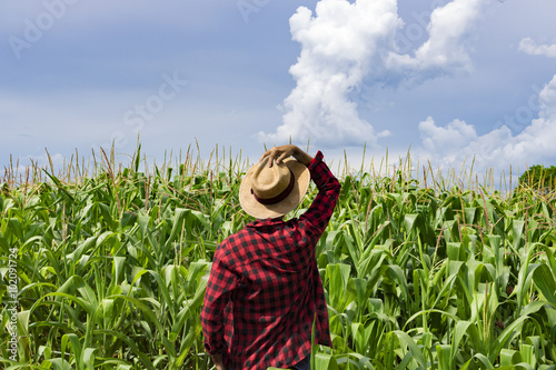 Fotografía  Farmer with hat looking the corn plantation field