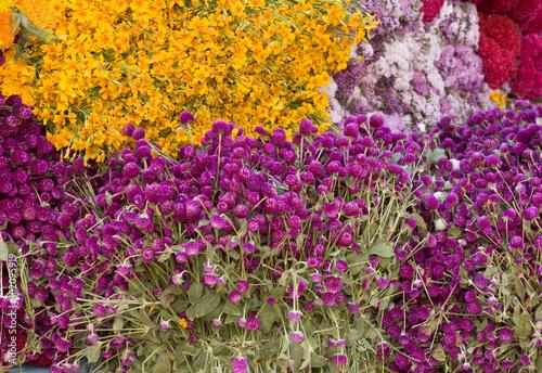 Zdjęcie XXL Masy koniczyny i kwiatów nagietka na sprzedaż na rynku Day of the Dead uroczystości, Oaxaca, Meksyk