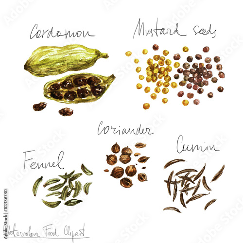 Recess Fitting Watercolor Illustrations Watercolor Food Clipart - Spices