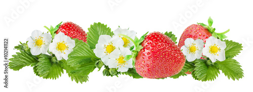 Poster Légumes frais Strawberry over white background