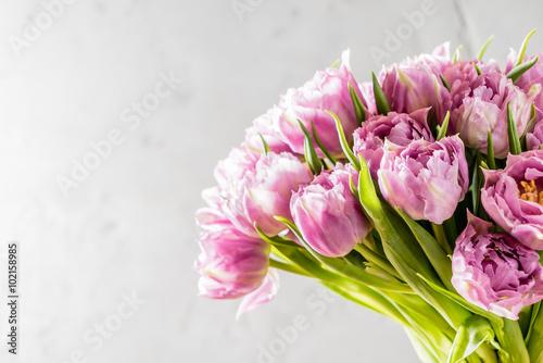 Fototapeta pink tulips obraz na płótnie
