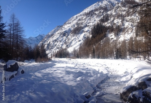 Foto op Plexiglas Parco Nazionale Gran Paradiso