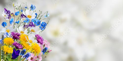Montage in der Fensternische Blumen Holiday Nature Floral Background