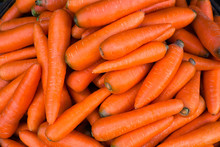 Organic Carrot. Food Background. Carrot Background.