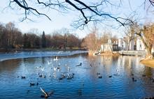 Lazienki Or Royal Baths Park In Warsaw In Poland
