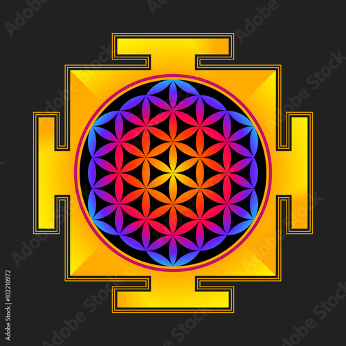 Fototapeta colored flower of life yantra illustration.
