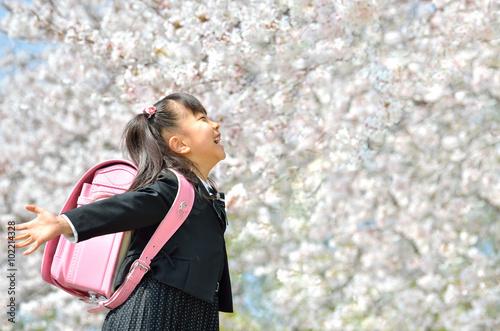 Fotografía  新一年生の女の子(桜)