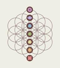 Chakra Icons On Flower Of Life Modern Design