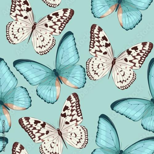 Tapeta ścienna na wymiar Colorful butterflies seamless