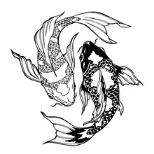 Koi Fish; Ying Yang Symbol