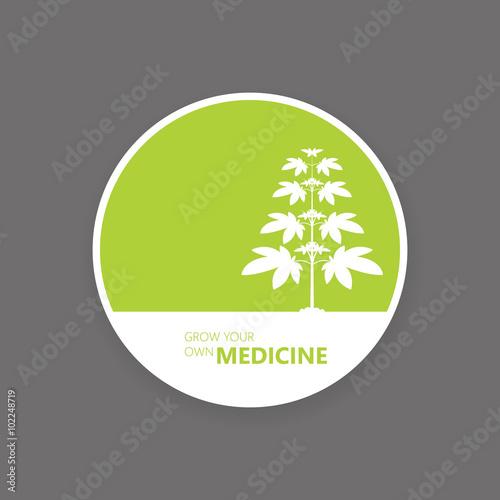 Fotografie, Obraz Medical marijuana label decign vector.