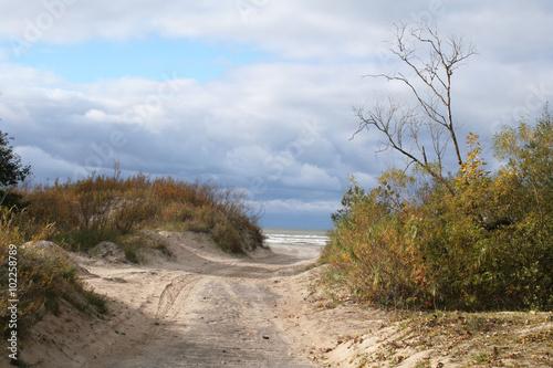 Cadres-photo bureau La Mer du Nord The path towards the sea in the autumn.