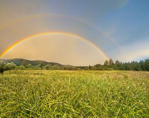summer meadow and rainbow