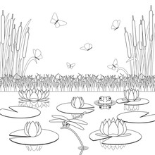 Coloring Page With Pond Inhabi...