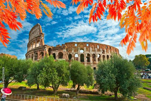 Photo  Rome, Coliseum. Italy.