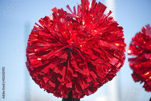 Fotografía  cheerleader pom poms