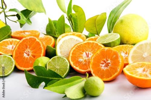 Fotografie, Obraz  Vitaminreiche Zitrusfrüchte: Orangen, Zitronen, Limetten und Mandarinen :)