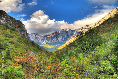 Fotografie, Obraz  Vibrant mountain valley in the mountains of Velebit national park in Croatia