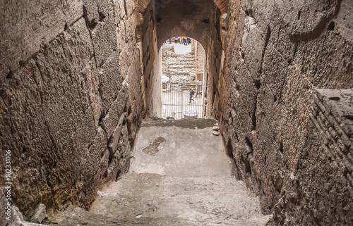 Poster Ruine Sotterraneo all'interno del Colosseo