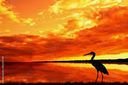 Foto op Aluminium Rood bright orange sunset on the lake with heron on the shore