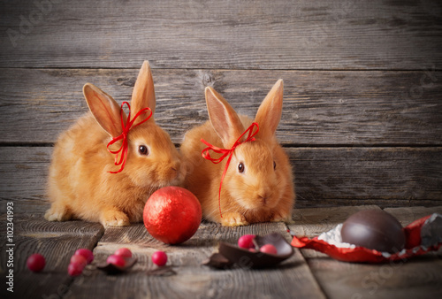 Stickers pour porte Pierre, Sable rabbits with chocolate eggs on wooden background