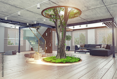 Fotografía  Real living tree indoor concept
