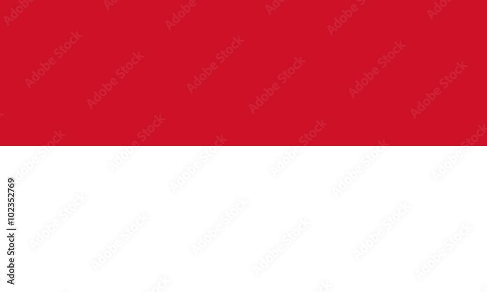 Fototapeta Flag of Indonesia
